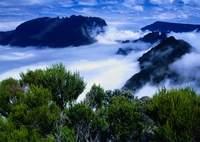 cliquez pour accéder au calendrier complet des courses de montagne à la Réunion